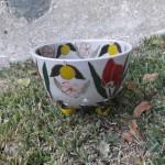 Lemon Berry Bowl